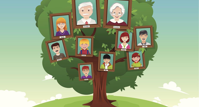 Im Familienstammbaum ist die Erbfolge ersichtlich.