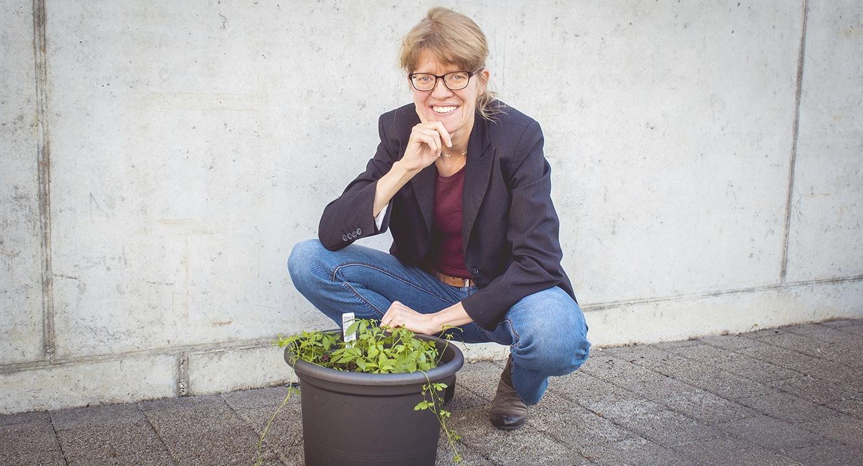 Bloggerin Silvia Stierli pflanzte das Unsterblichkeitskraut